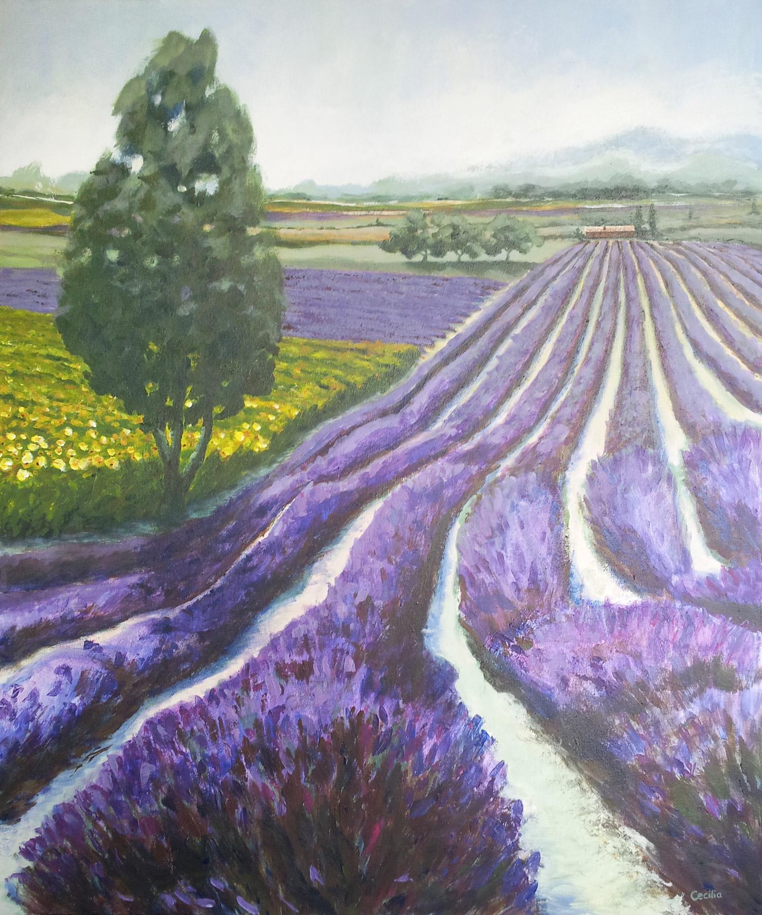 Herinneringen aan de Provence